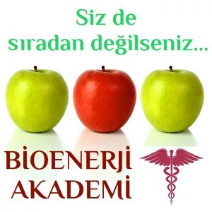 Bioenerji Eğitimi ve Bioenerji Seansı Kalitesi