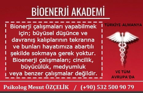 Bioenerji Akademi Bioenerji Eğitimi 10
