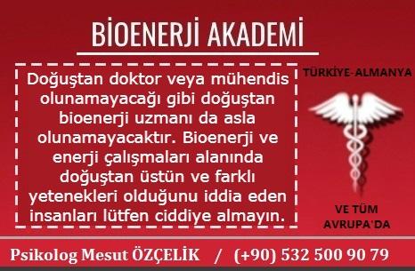 Bioenerji Akademi Bioenerji Eğitimi 15