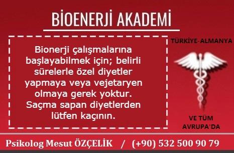 Bioenerji Akademi Bioenerji Eğitimi 16