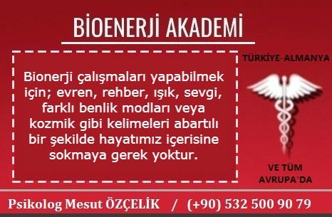 Bioenerji Akademi Bioenerji Eğitimi 17