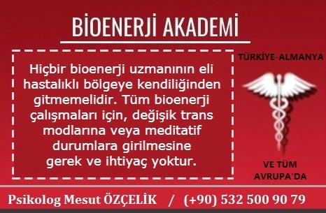 Bioenerji Akademi Bioenerji Eğitimi 6
